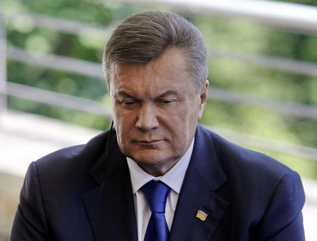 Wiktor Janukowycz /Andrzej Grygiel /PAP