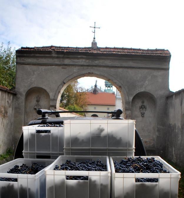 Wina pwostają w zabytkowych pomieszczeniach klasztoru. Fot. Marek Lasyk /Reporter