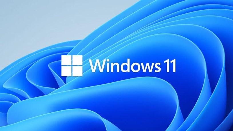 Windows 11 /materiały prasowe