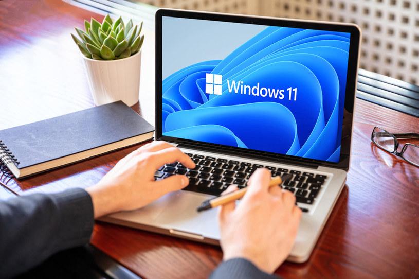 Windows 11 /123RF/PICSEL