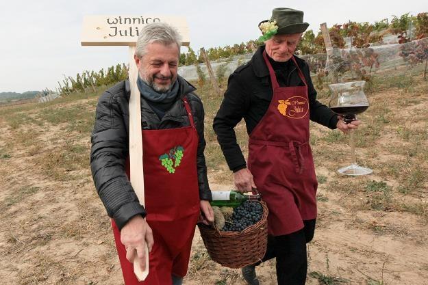 Winiarze idą na uroczystość otwarcia Lubuskiego Centrum Winiarskiego w miejscowości Zabór /PAP