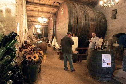 Wino nie jest alkoholem. Wino jest napojem boskim, darem bogów. /AFP