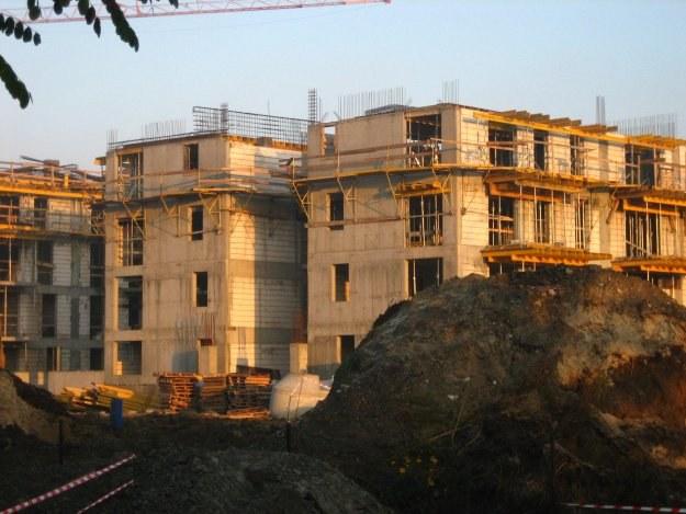 Wiosenne miesiące pokażą, czy zmniejszenie liczby projektów zaowocuje wzrostem popytu /INTERIA.PL