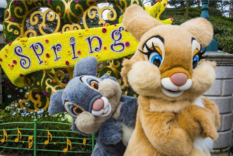 Wiosną organizowane są tu m.in. wielkie parady /materiały prasowe