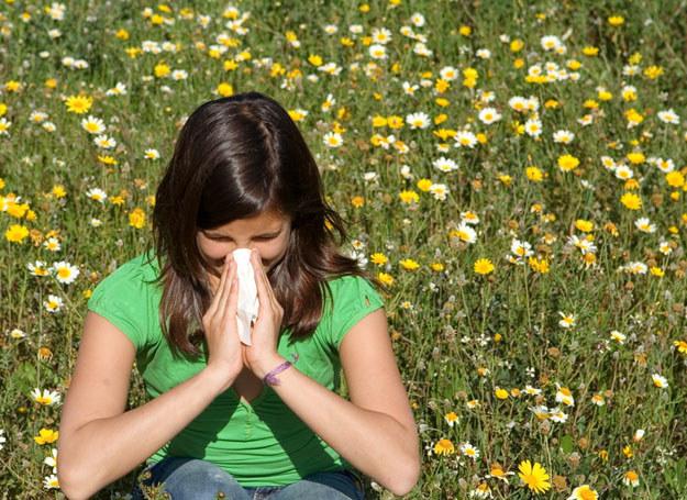 Wiosna to nie jest łatwy okres dla alergików /© Panthermedia