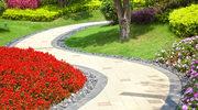 Wiosna w ogrodzie - jakie prace wykonać na początku sezonu?