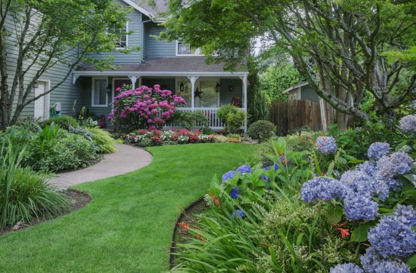 Wiosną zadbaj o trawnik /123RF/PICSEL