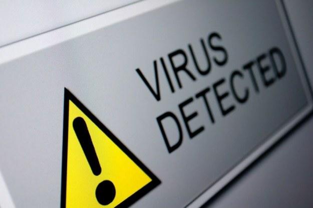 Wirus VBKlip podmienia numery kont bankowych, w efekcie czego przelewy trafiają do cyberprzestępców. /123RF/PICSEL