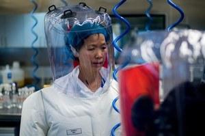 Wirusolożka z Wuhan: To tylko wierzchołek góry lodowej