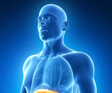 Wirusowe zapalenie wątroby typu C: Prawdy i mity