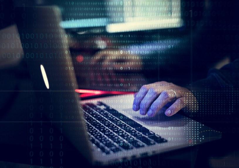 Wirusy i inne rodzaje złośliwego oprogramowania to od dziesięcioleci rosnące zagrożenie /materiały prasowe