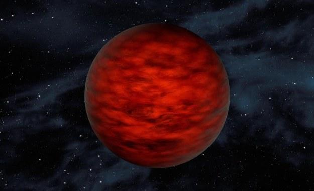 WISEA 1147 - wizualizacja /NASA