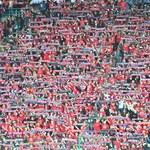 Wisła Kraków. Klub otrzymał ponad 2,5 mln złotych w ramach tarczy finansowej