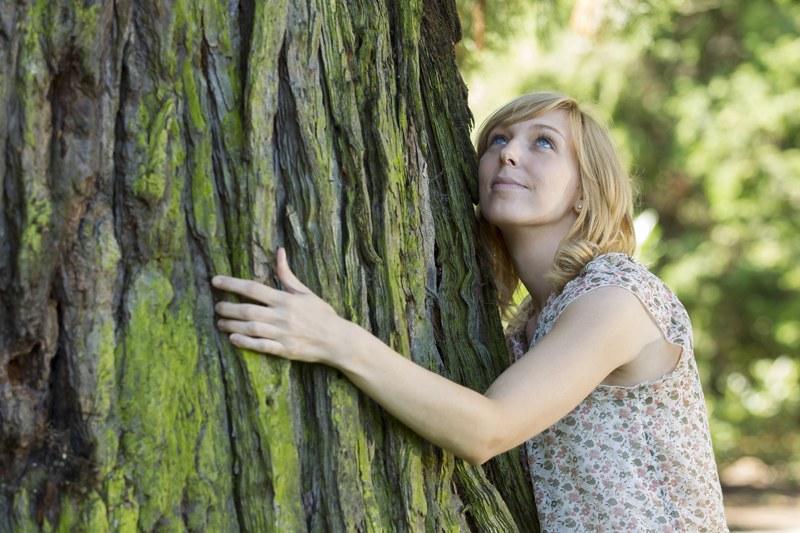 Wisną przytulaj się do drzew /123RF/PICSEL