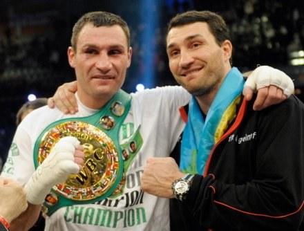 Witalij (z lewej) i Władymir Kliczko. Ukraińcy dominują w wadze ciężkiej /AFP