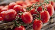 Wiwat pomidory