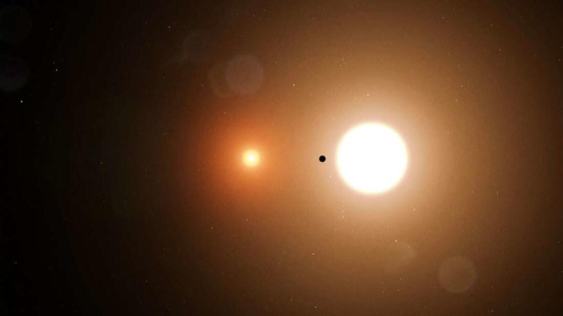 Wizja artystyczna TOI 1338 b /NASA