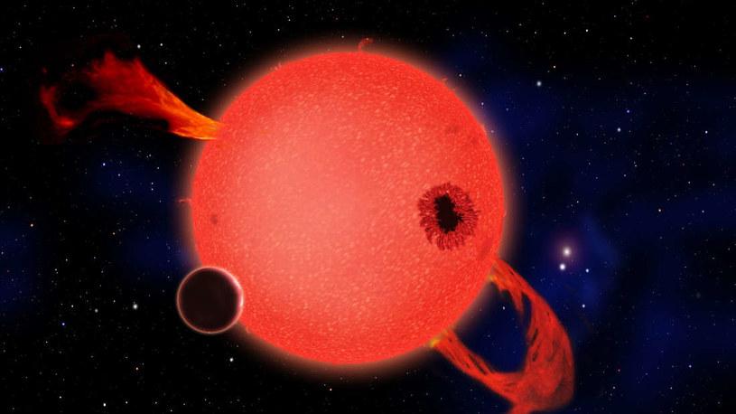 Wizja artystyczna układu planet krażących wokół GJ 536 /materiały prasowe