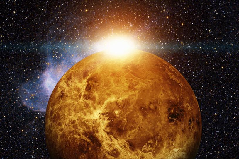 Wizualizacja planety Wenus /123RF/PICSEL