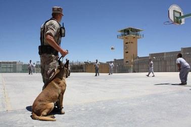 """Wizyty małżeńskie, kąpiele w łaźni. Meksyk zamyka więzienie, w którym siedzi """"El Chapo"""""""
