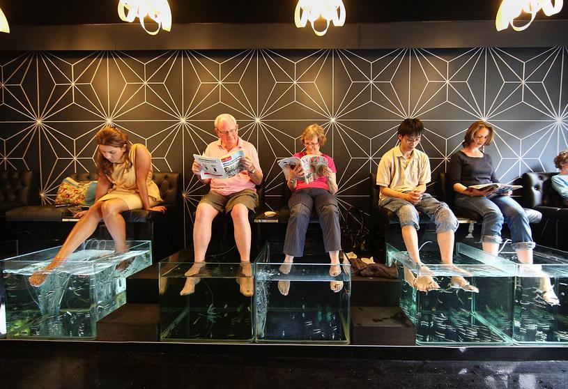 Wkładasz nogi albo ręce do akwarium lub zanurzasz się w wannie. Wielu pacjentów... śmieje się, bo rybki potrafią połaskotać /Getty Images/Flash Press Media