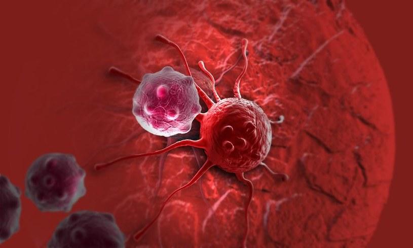 Wkrótce powstanie nowy sposób walki z rakiem? /123RF/PICSEL