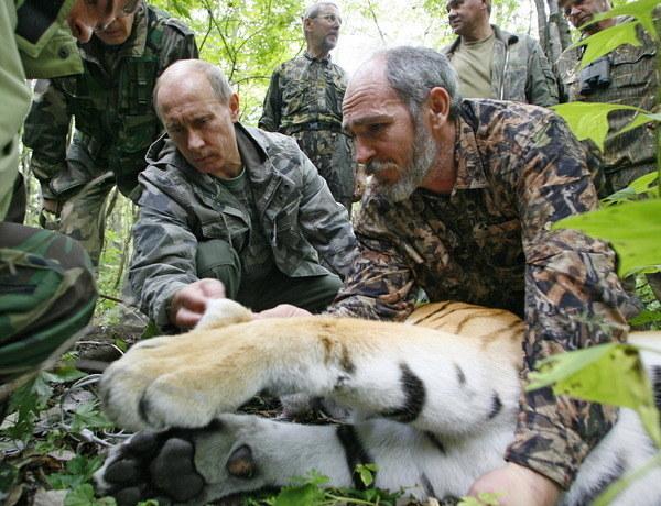 Władimir Putin nie kryje sympatii do dzikich zwierząt /AFP