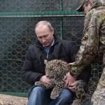 Władimir Putin sfotografował się z lampartem
