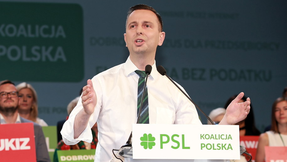 Władysław Kosiniak-Kamysz /Piotr Augustyniak /PAP