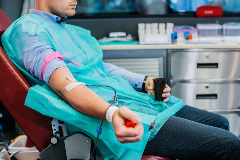 Władze Poznania apelują o oddawanie krwi, zdj. ilustracyjne /Maciej Stanik /Reporter