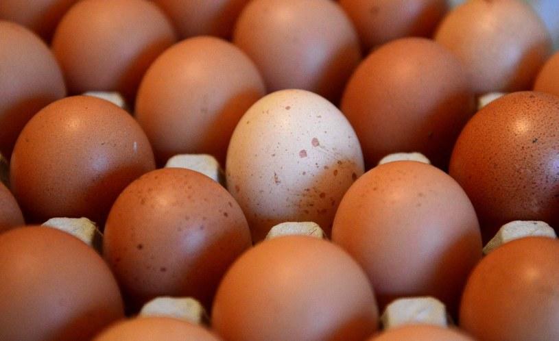 """Właściciel zapewnia, że """"jajka z chili są pyszne""""... /AFP"""