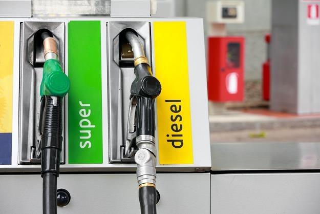 Właściciele pojazdów na olej napędowy nie mają szczęścia /©123RF/PICSEL