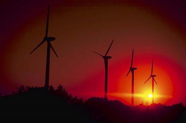 Właściciele wiatraków straciły na tym biznesie prawie 3 mld zł /AFP