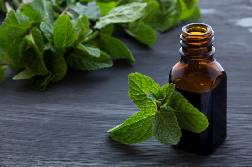 Właściwości chłodzące i przeciwbólowe olejek miętowy zawdzięcza dużej zawartości mentolu /123RF/PICSEL