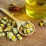Właściwości herbaty z chryzantemy