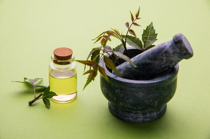 Właściwości olejku neem /©123RF/PICSEL