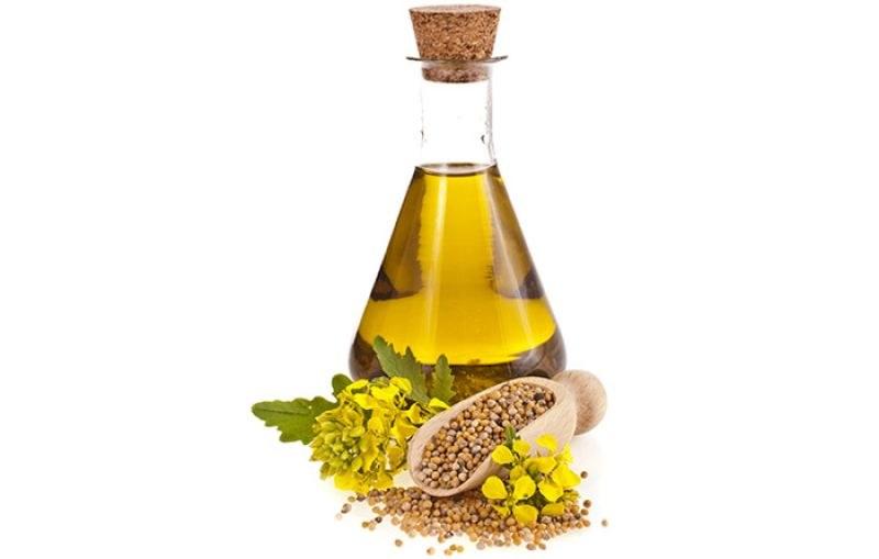 Właściwości oleju gorczycowego /© Photogenica