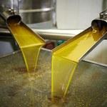 Włochy: Rekordowy wzrost liczby przypadków fałszowania oliwy