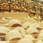 Włochy zmagają się z plagą kradzieży parmezanu. Straty? Miliony euro