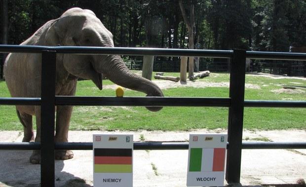 Włosi zagrają w finale Euro 2012. Tak obstawia Citta