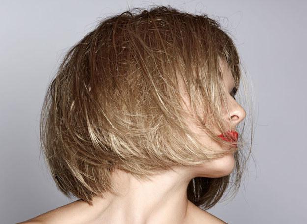 Włosy mają średnią długość, z tyłu sięgają karku, z przodu natomiast linii ust /123RF/PICSEL