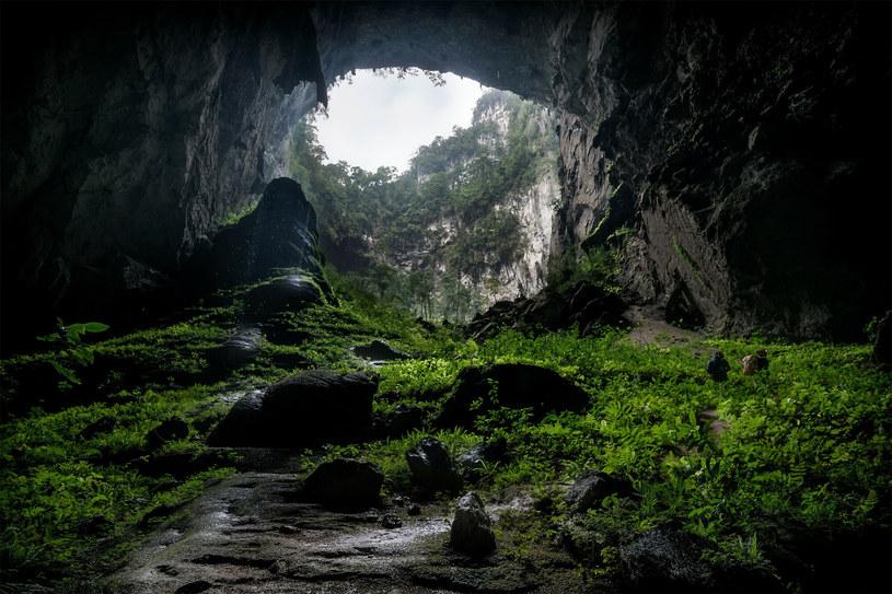 Wnętrze jaskini Hang Son Doong /Lam Tu / Solent News /East News