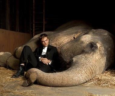 """""""Woda dla słoni"""""""