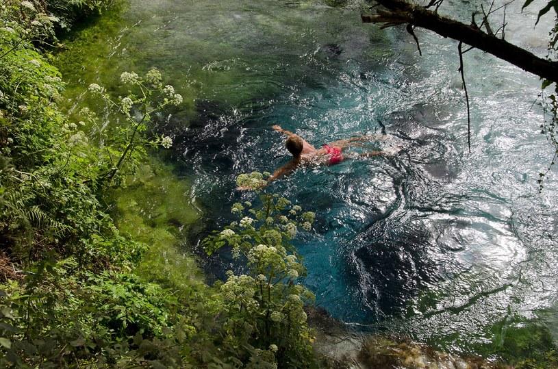 """Woda w """"Blue Eye"""" jest bardzo zimna, ale i tak nie brakuje amatorów pływania w tym miejscu /Cubo Images /East News"""