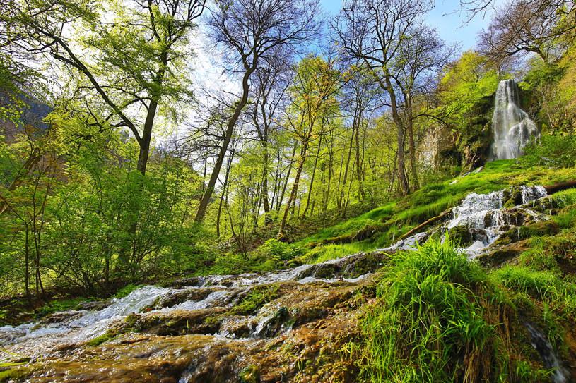 Wodospad Uracher można zwiedzać właściwie przez cały rok, ale najpiękniej prezentuje się zwłaszcza po obfitych opadach /123RF/PICSEL
