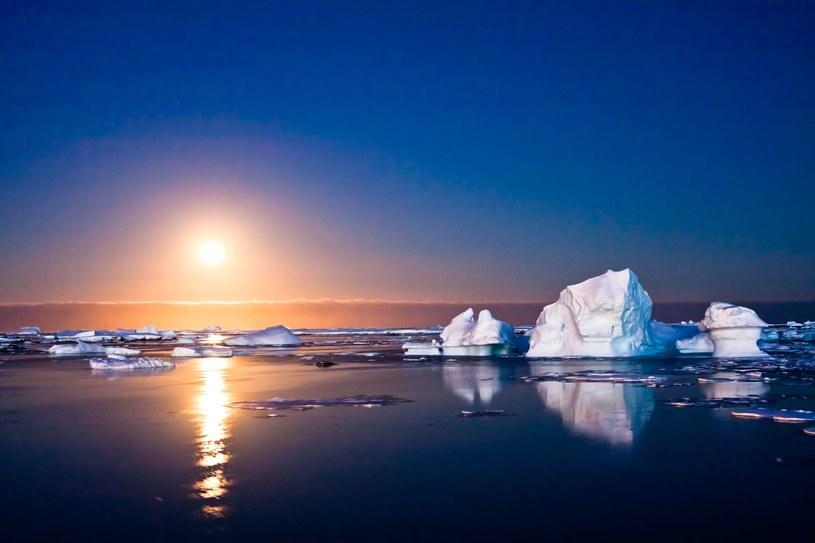 Wody otaczające Antarktydę tworzą odrębny ocean /123RF/PICSEL