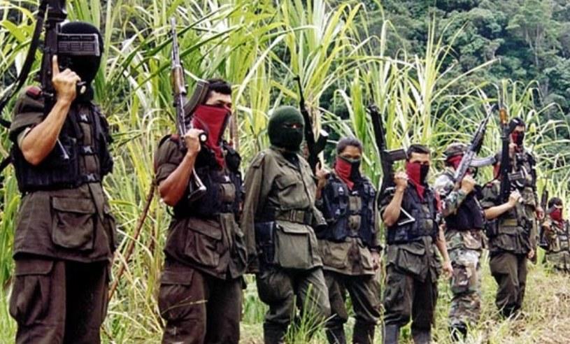 Wojna domowa, która wybuchła w Kolumbii w połowie XX wieku toczy się do dziś /AFP