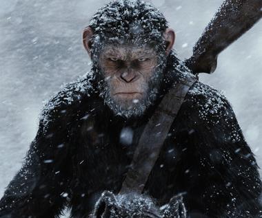 """Wojna o Planetę Małp"" [trailer 2]"