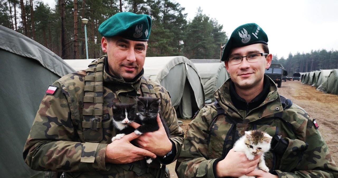 Wojskowi pojechali na ćwiczenia. Wrócili z nich z malutkimi kotkami