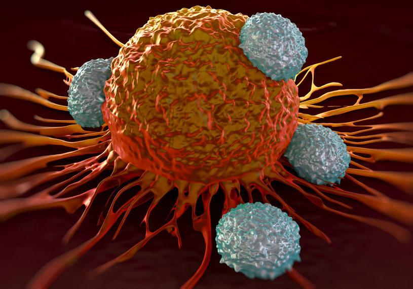 Wolne rodniki a nowotwory /©123RF/PICSEL